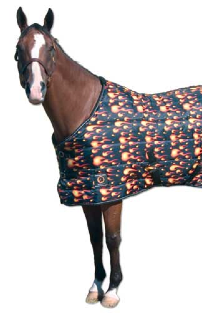 Dogs Wear Sweater Cold Horses